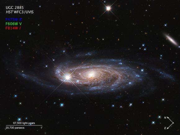 Zoco de Astronomía: Una espiral gigantesca